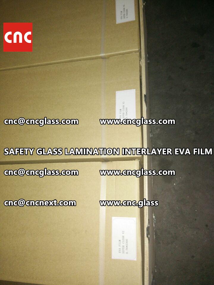 SAFETY GLASS LAMINATION INTERLAYER EVA FILM PACKING LOADING (26)